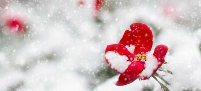 Снегурочка – краткое содержание оперы Римского-Корсакова