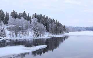 Сочинение на тему Зимнее небо 6 класс