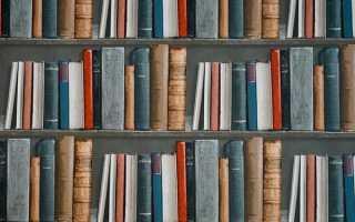 Сочинение на тему Любовь к чтению 15.3 9 класс