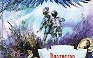 Дети синего фламинго – краткое содержание повести Крапивина